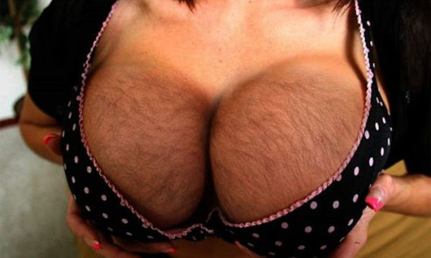 Bilderesultat for hairy woman