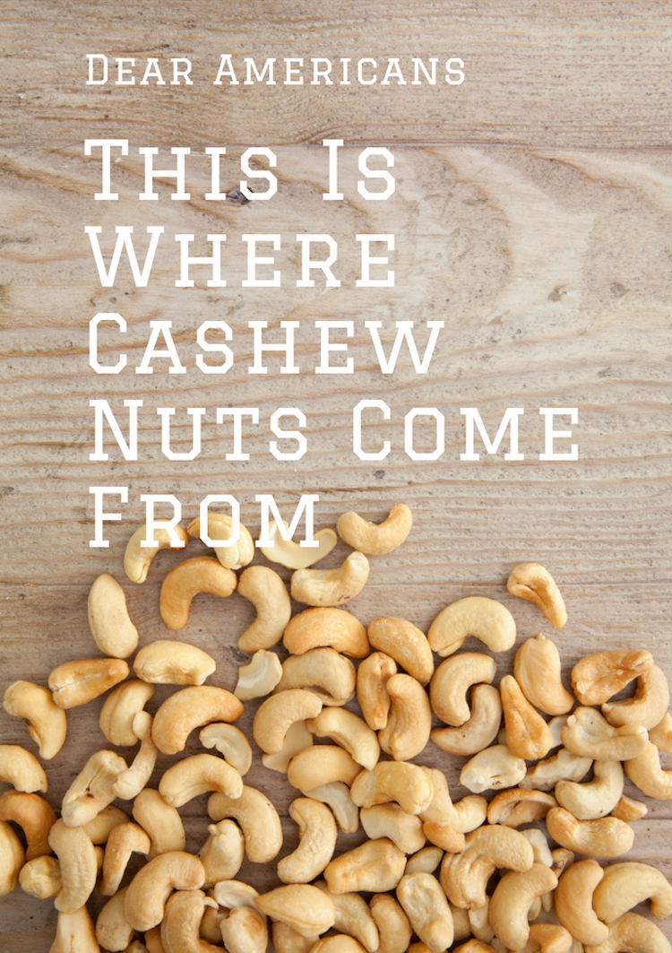Apparently Americans don't know where cashew nuts come from or that cashew are actually real, edible fruits